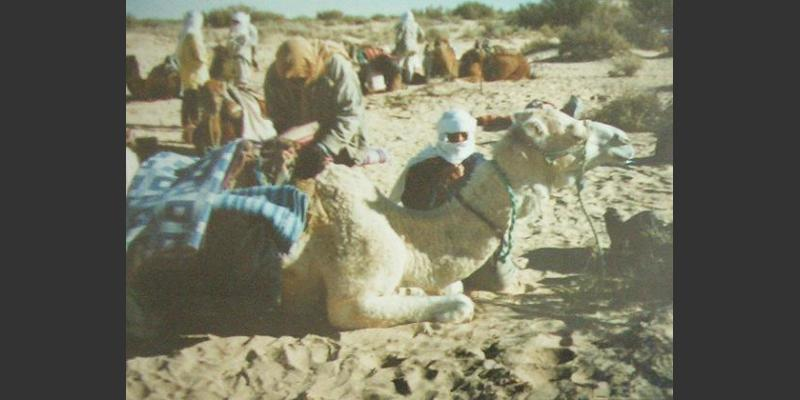 1997: A camel trek to South-Tunisia